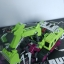 เปิดจอง JINBAO Bulider Oversized Devastator - Set A thumbnail 6