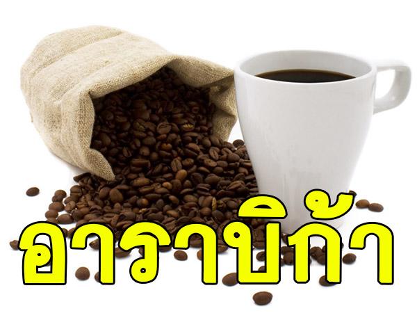 CA กลิ่นกาแฟอาราบิก้า Coffee Arabica Flavor