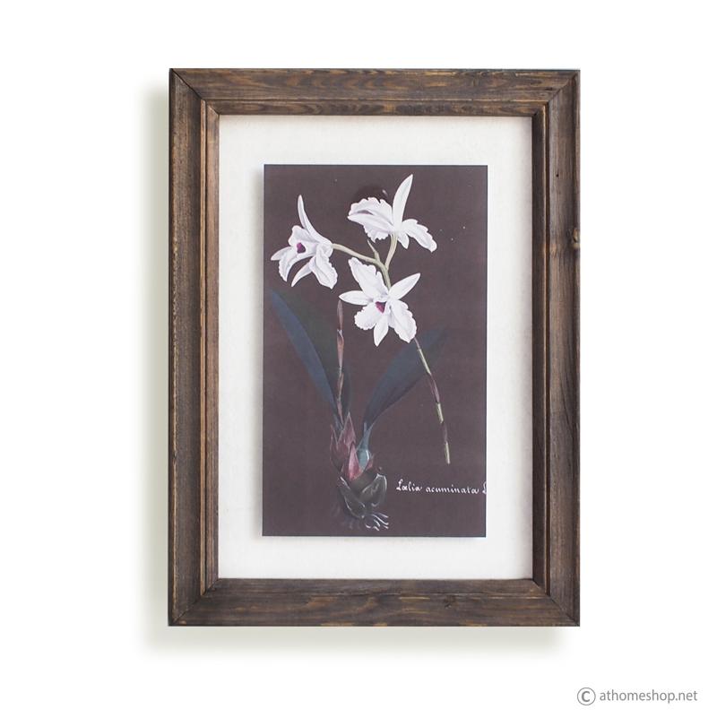 วอลล์อาร์ตลายดอกไม้ กรอบบัวไม้กระจกคู่