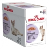 Royal Canin Sterilised หนึ่งโหล420รวมส่ง