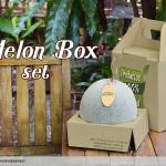 กล่องบรรจุเมล่อน แบบหูหิ้ว พร้อมไส้ประคอง ไม่ให้ เมล่อนช้ำ ขนาด 20 x 20 x 23 ซม. (บรรจุ 25 กล่อง ต่อ แพ็ค)