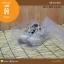 สีขาวใส ขนาด 20 x 30 x 12 ซม. (บรรจุ 2 กล่องต่อแพ็ค) thumbnail 2