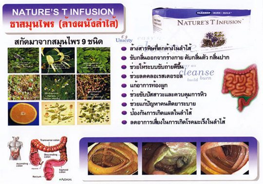 ส่วนประกอบใน nature tea unicity