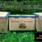 ชาเนเจอร์ที ยูนิซิตี้ Nature Tea Unicity ขนาด 30 ซอง