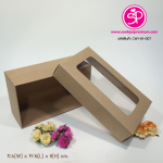 CW1-01-007 : กล่องฝาครอบ ขนาด 11.6 x 19.5 x 8.0 ซม. มีหน้าต่าง