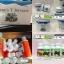 คลอโรฟิลล์ ยูนิซิตี้ Chlorophyll Unicity thumbnail 3